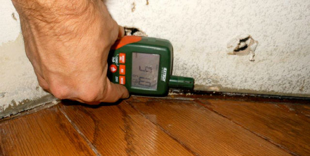 Residental and Commercial Mold Inspections