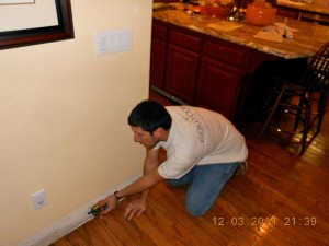 mold removal cost San Diego CA